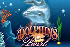 Dolphin's Pearl BTD
