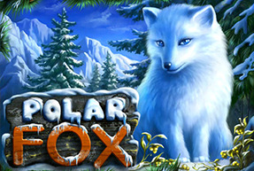 Polar Fox BTD